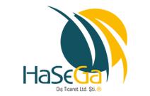הסגה – Hasega